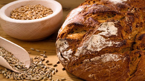 Brot backen lernen - hochwertige Online-Kurse bei Makerist