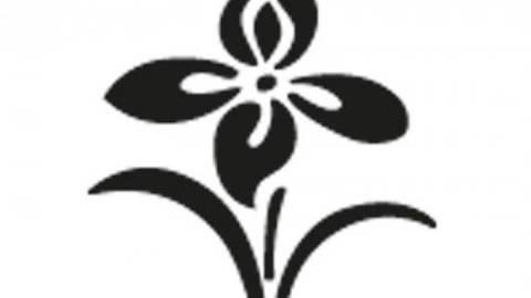 Stanzer Frühligsblume 2,5cm kaufen im Makerist Materialshop