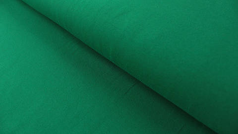 Grüner Baumwolljersey: Green - 160 cm kaufen im Makerist Materialshop
