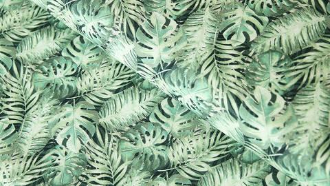 Baumwollstoff grün-weiß: Monstera - 160 cm kaufen im Makerist Materialshop