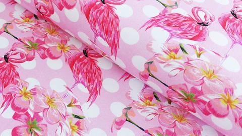 Rosa-weiß bedruckter Baumwolljersey: Flamingo - 150 cm kaufen im Makerist Materialshop