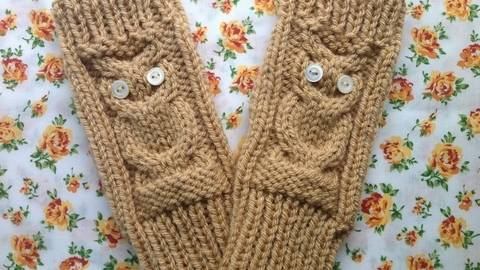 Pride and Prejudice Mittens - Knitting