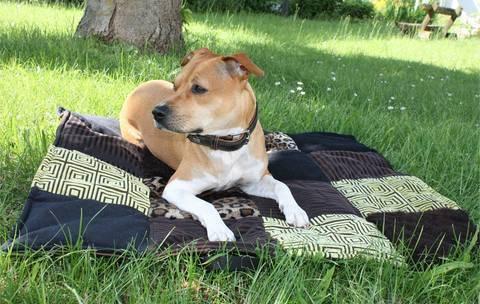 """Hundedecke """"JULIE"""" eBook Schnittmuster mit Tutorial bei Makerist sofort runterladen"""