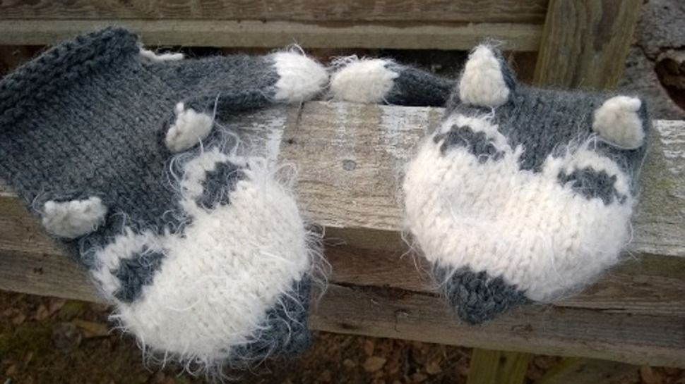 Download Siberian Husky Mittens knitting pattern - Knitting Patterns immediately at Makerist