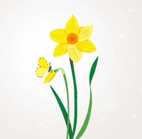 Frühling Narzisse - Plotterdatei  bei Makerist sofort runterladen