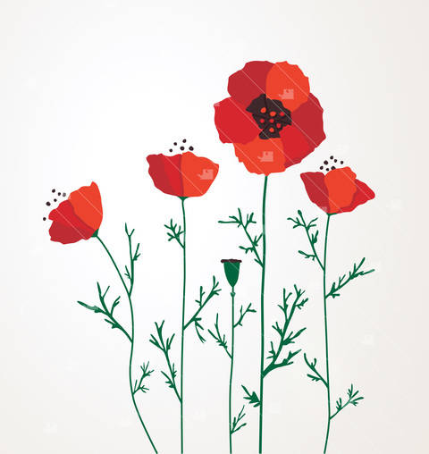 Download Poppies - Cutting file immediately at Makerist