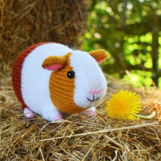 Download Gordon the Guinea Pig - toy knitting pattern immediately at Makerist