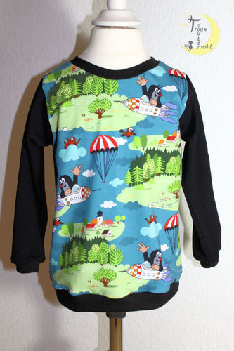 Makerist - Bogi-Shirt *Pauli unterwegs* - Nähprojekte - 1