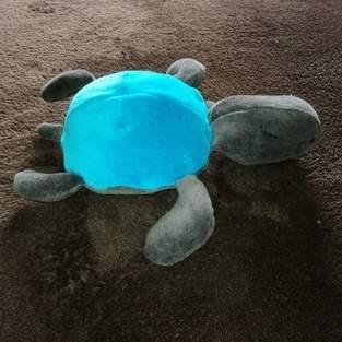 Makerist - plüsch schildkröte aus nicki - 1