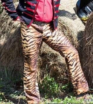 Makerist - Eine  Hose für Tiger, Bühnenoufit - 1