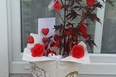 Makerist - Blumentopfhülle - 1