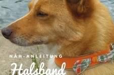 Makerist - Hunde-Halsband mit Schleife - 1