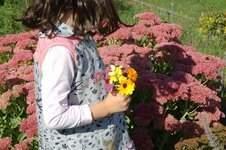 Makerist - Lilia - von GialLino Sweatkleid mit dem gewissen Etwas für kleine Ladies - 1