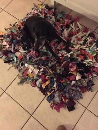 Makerist - Schnüffelteppich für Hunde - 1