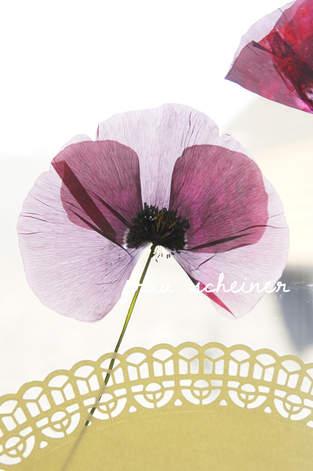 Makerist - DIY Blumen Fensterbild - 1