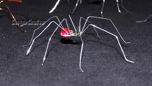 Makerist - Halloween-Spinne aus Draht u. Perlen - 1