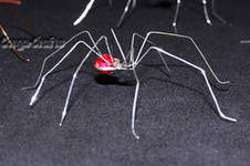 Makerist - Halloween-Spinne aus Draht u. Perlen - 1