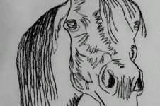 Makerist - Genähmalt: Pferdekopf Araber - 1