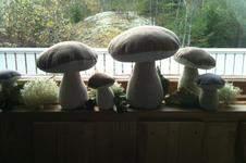 Makerist - Pilze auf der Fensterbank.....! - 1