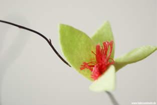 Makerist - Blüten aus Filz - 1
